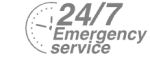 24/7 Emergency Service Pest Control in Herne Hill, SE24. Call Now! 020 8166 9746